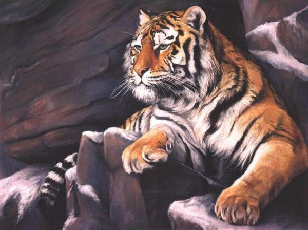 Siberian Tiger painting